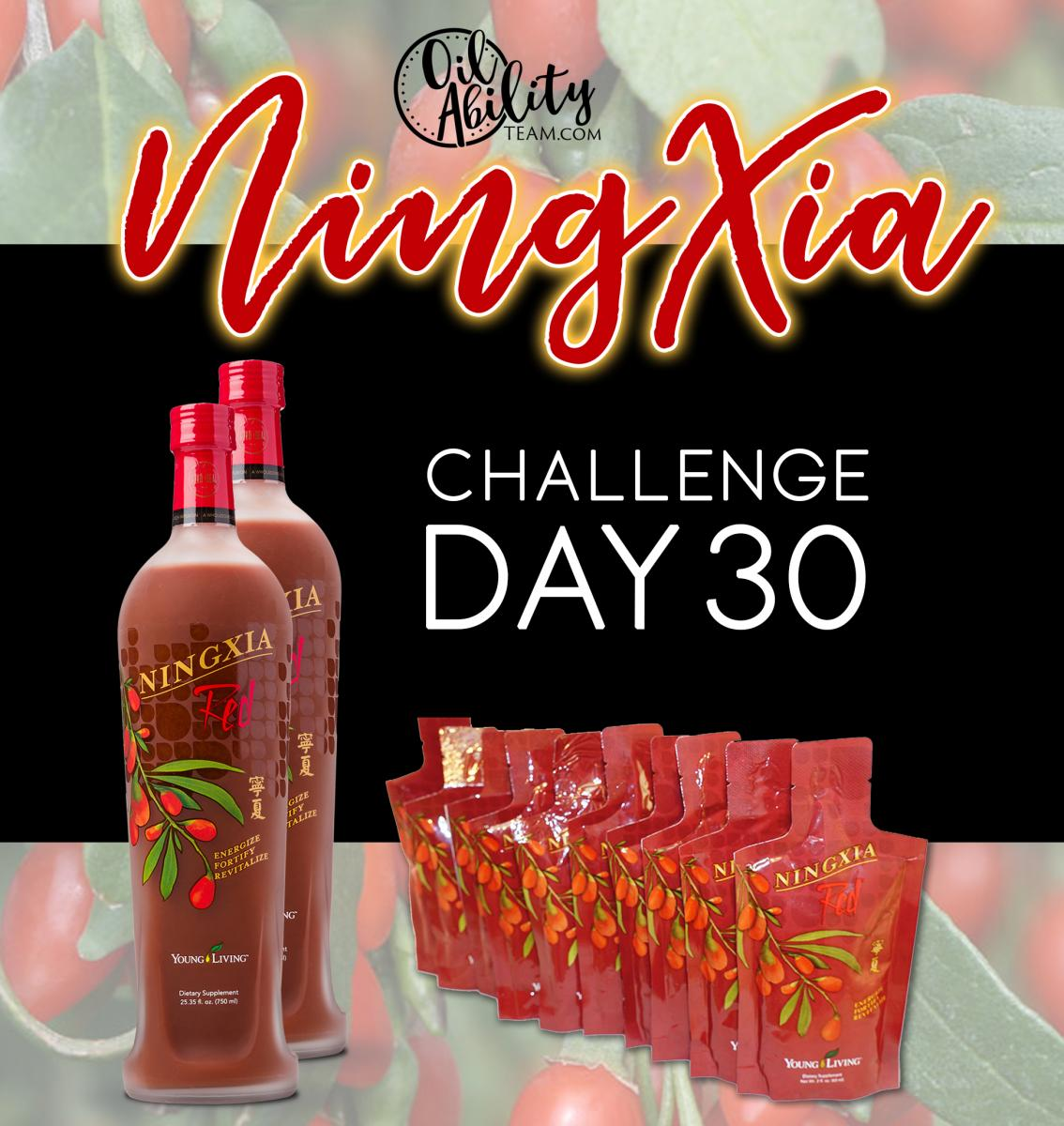 NingXia Day 30 Graphic