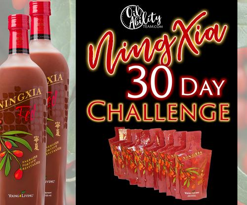NingXia 30 Day challege Graphic-2
