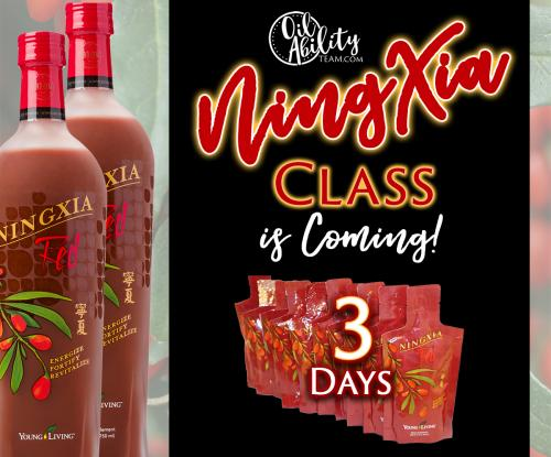 NingXia Class in 3 days