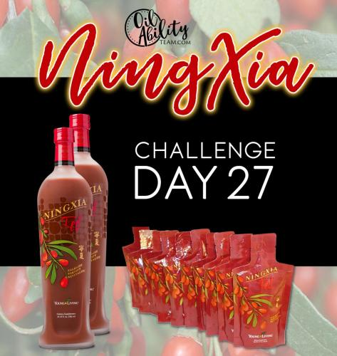 NingXia Day 27 Graphic