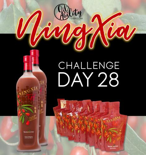 NingXia Day 28 Graphic